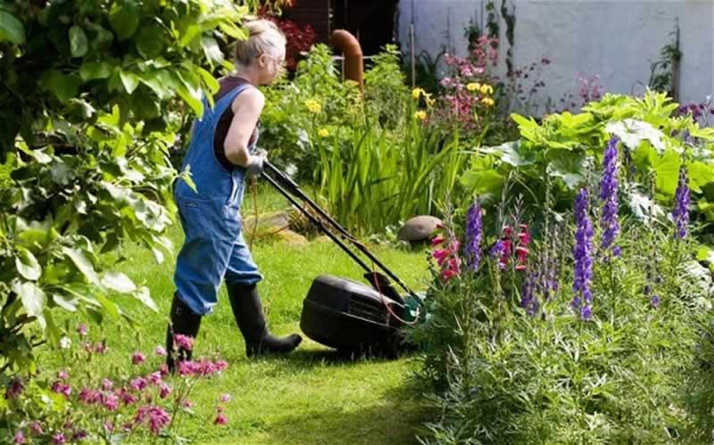 Garden Maintenance Checklist - mowing