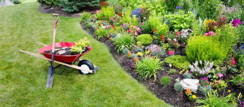 Garden Maintenance Checklist