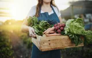 How to Incorporate Organic Methods into Your Gardening Habits