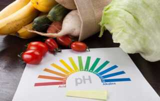 How to Incorporate Organic Methods into Your Gardening Habits - PH