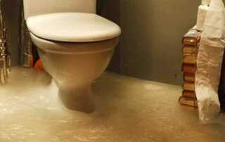 Know all about toilet overflow damage