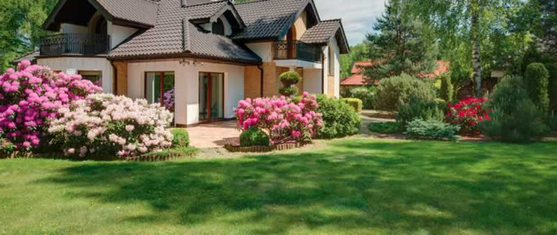 Should I tidy my garden before selling my house - clean garden