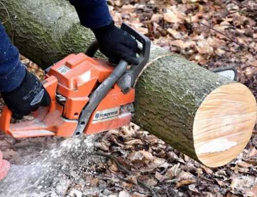 Tips for Chainsaw Care and Maintenance
