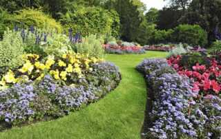 Transform Your Garden Into A Springtime Paradise - amazing garden