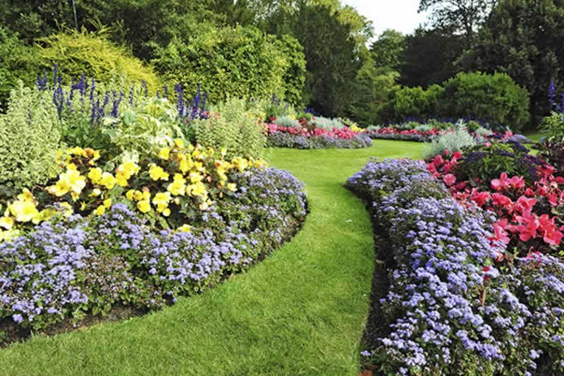 Transform Your Garden Into A Springtime Paradise - amazing garden