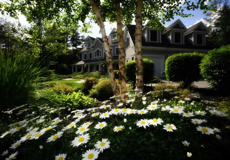 3 Simple Tricks for Leveling Up Your Curb Appeal - amazing house