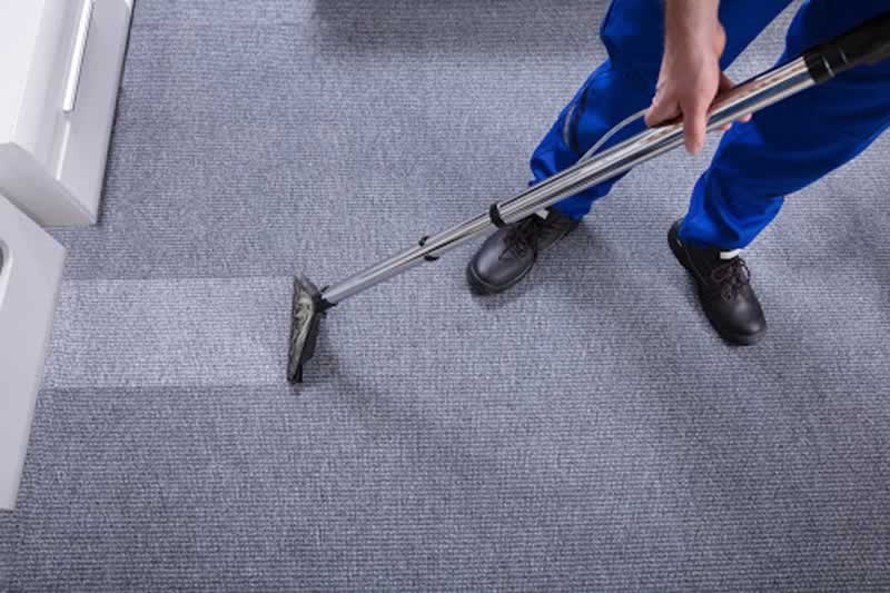 5 Reasons You Need Carpet Cleaning Services