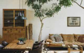 5 Ways To Keep Your Home Cool This Summer - cool house