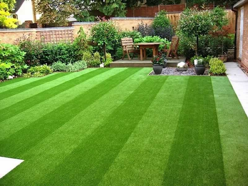 Benefits of Artificial Grass - amazing lawn
