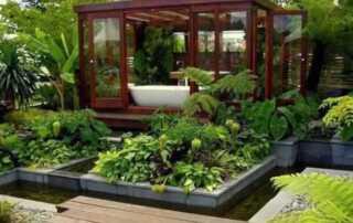 Easy DIY Ways to Make Your Plants Grow Healthier Than Ever - amazing garden