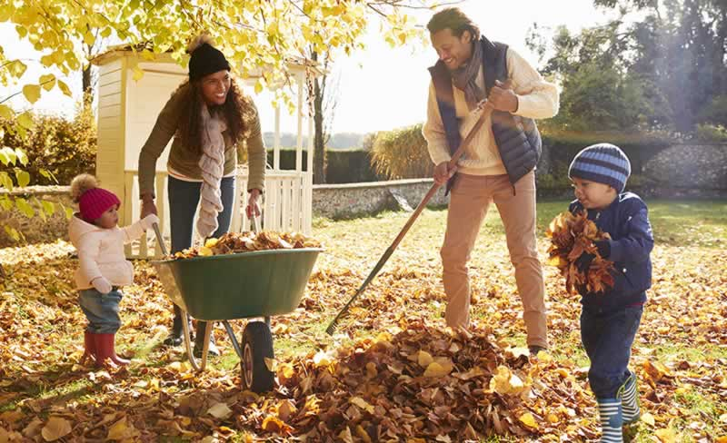 Easy Way to Rake Leaves in Your Yard - family raking leaves