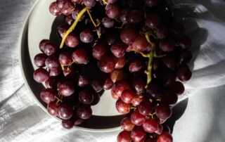 Foods That You Probably Didn't Know are Harmful to Dogs - grapes
