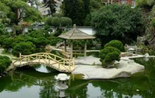 Garden Designs - pond