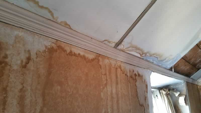 Handy Ideas For Homeowners To Deal With Moisture-Related Issues - water damage