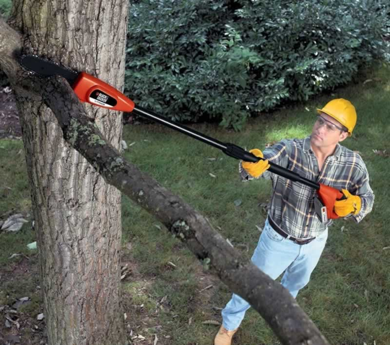 How to Use a Cordless Pole Saw - pruning