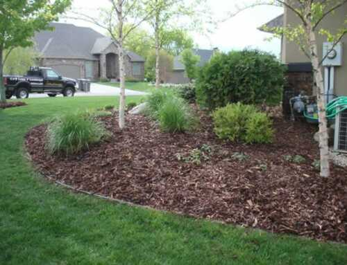 A healthy garden, healthy life – Pine Fines vs. Natural Mulch