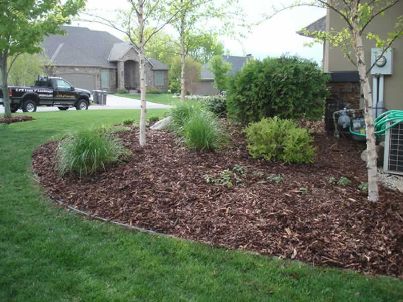 Pine Fines vs. Natural Mulch