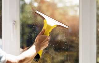 Top 6 Reasons To Buy A Window Vacuum This Year - vacuum