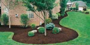 Why Do You Need Commercial Landscaping - nice yard