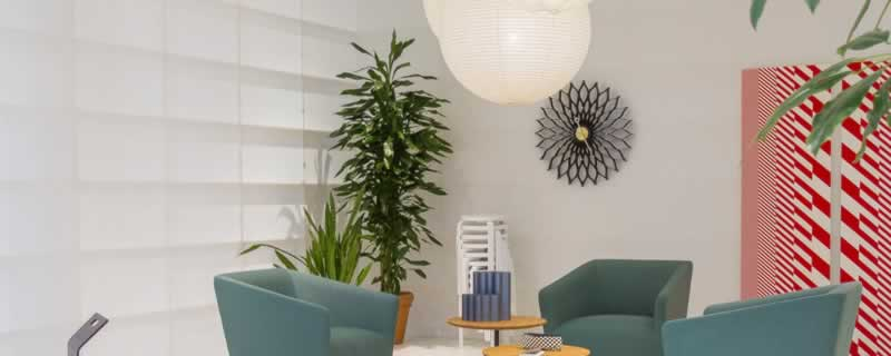 10 Ways To Add Luxury To Your Home - plants