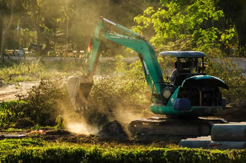 4 DIY Repairs With An Excavator - excavating trees