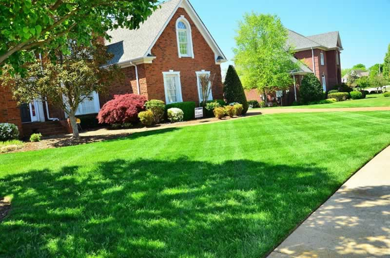 5 Little Things That Will Help Raise Your Home's Value - landscaping