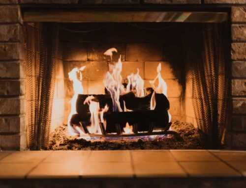 Best Type of Woods to Burn in Your Fireplace
