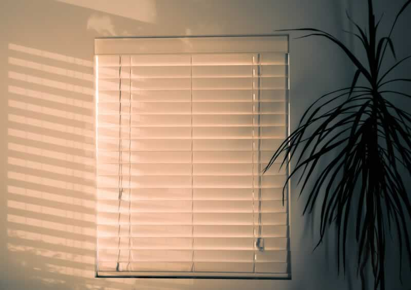 Expert Tips for Buying Window Blinds