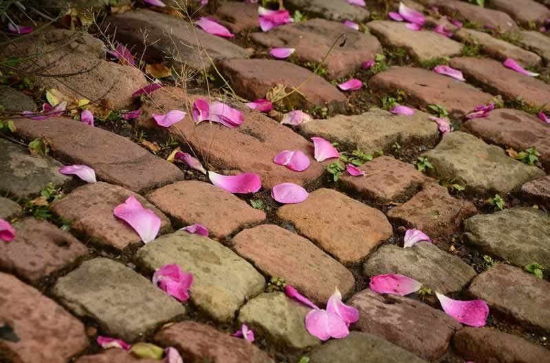 How to Choose the Perfect Paving Material - old pavers