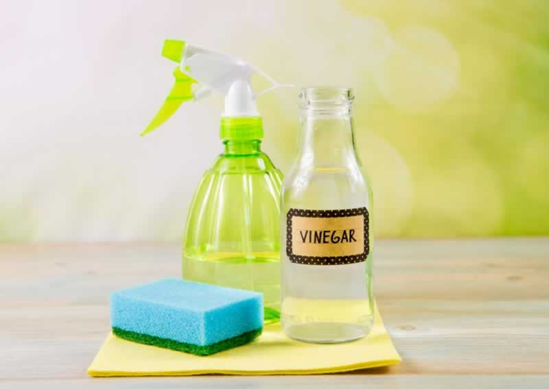 Shower Glass Cleaning Tips - vinegar