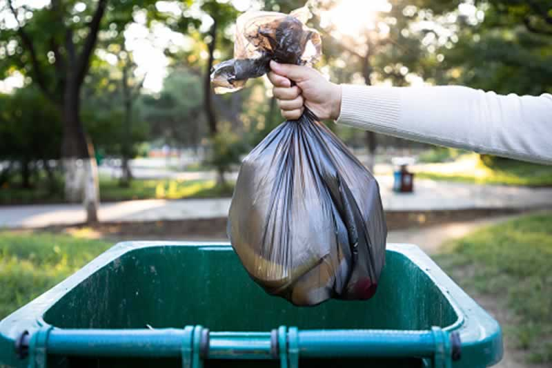 The Factors That Attract Pests To Your Home - garbage