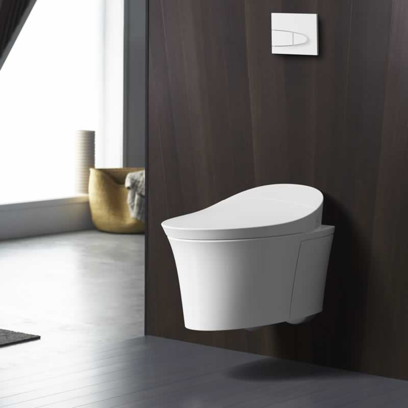 The Stylish and Space-Efficient Phenomenon of Wall-Hung Toilets - stylish toilet