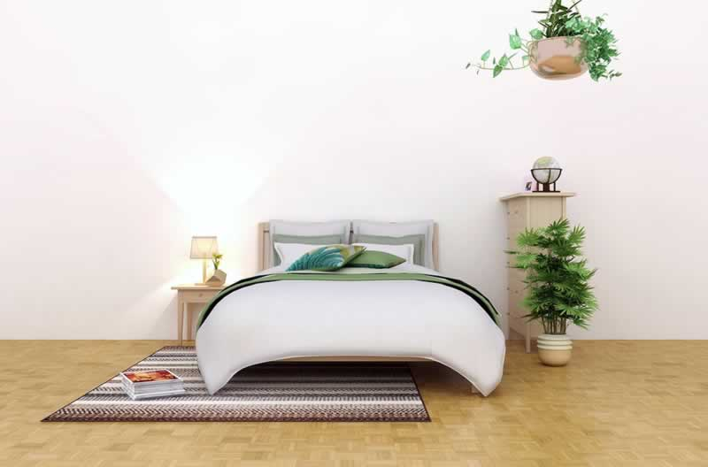 What Do You Need To Make An Eco-Friendly Bedroom - plants