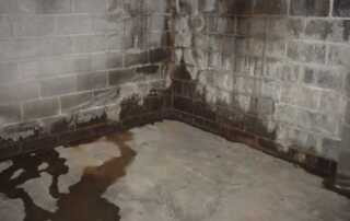 5 Subtle Warning Signs That You Have A Drainage Problems
