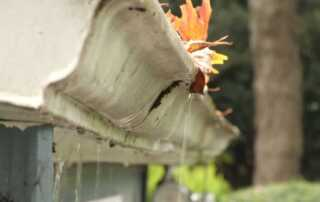 5 Subtle Warning Signs That You Have A Drainage Problems - overflowing gutters
