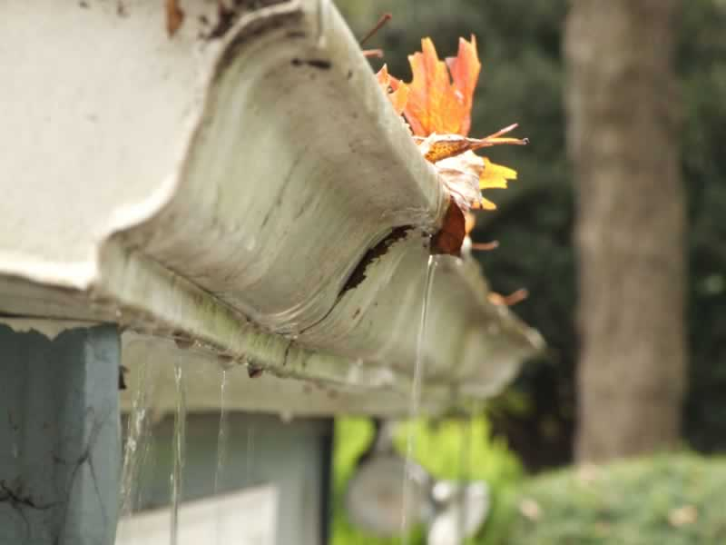5 Subtle Warning Signals of Drainage Problems - Overflowing Gutters