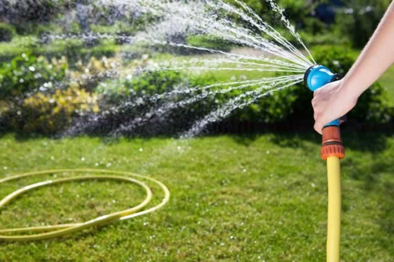 5 Tips On Correctly Watering Your Garden - watering
