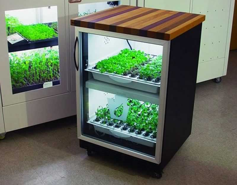 An Easy Buying Guide To Grow Boxes - hydroponic grow box