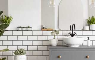 How to make your bathroom more stylish - plants