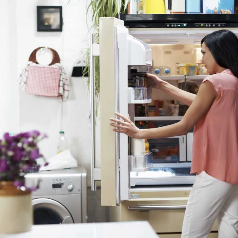 What Is the First Thing to Check When a Refrigerator Stops Working - checking