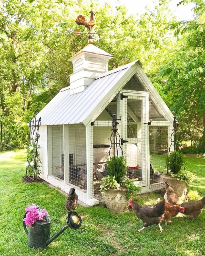 What Makes A Good Chicken Coop - amazing chicken coop