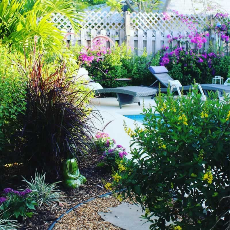 5 Ways to Improve Your Backyard Space