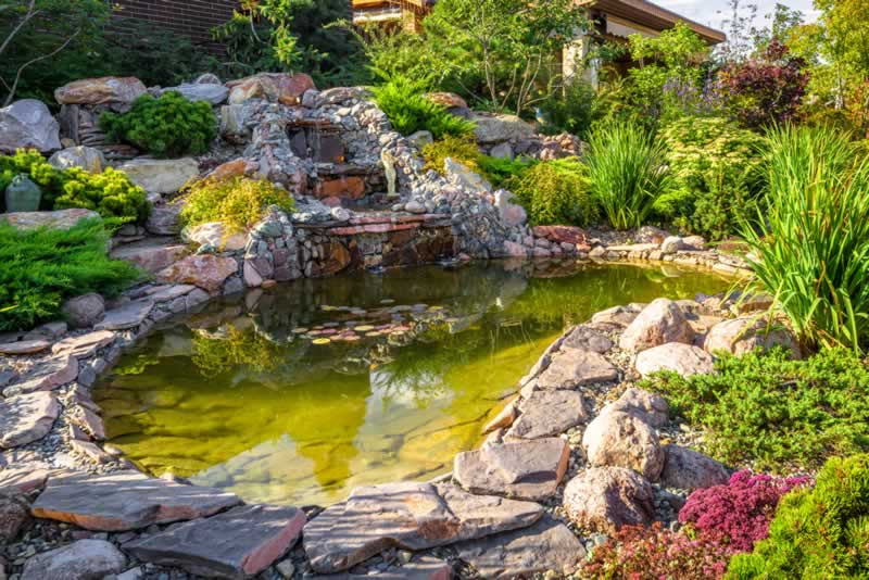 DIY Tips for Cleaning Your Garden Pond