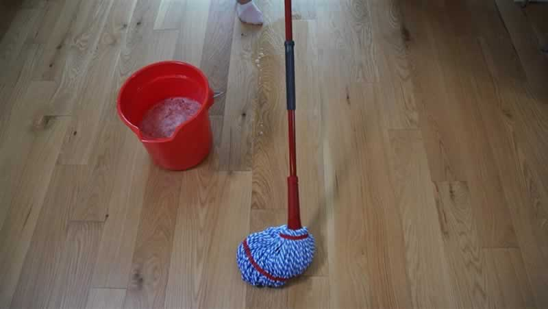 Everything You Should Know When Buying Hardwood Floor Mop - floor mop