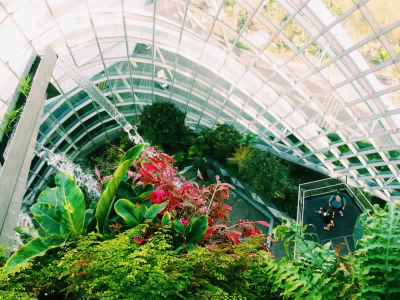Greenhouse Care and Maintenance Tips From the Experts