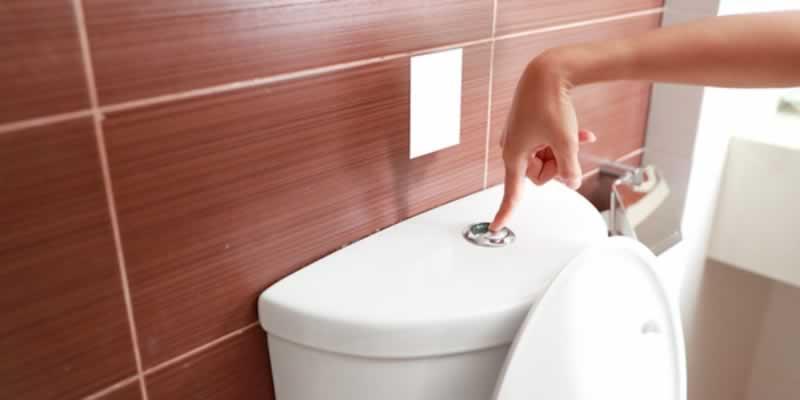 Toilet Flushing Do's and Don'ts According to The Pros