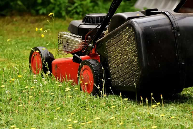 Qualities to Look For When Buying a Lawn Mower - lawn mower