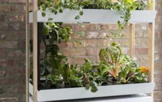 Smart and Eco-friendly Garden-care Tools - smart garden