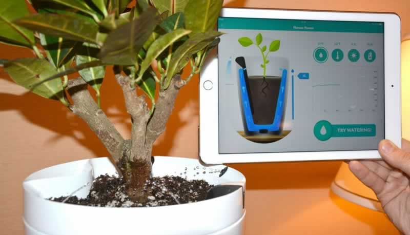 Smart and Eco-friendly Garden-care Tools