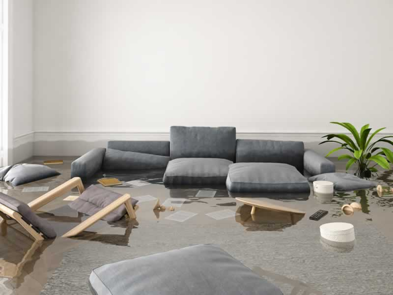 6 Things To Do If Your Home Is Flooded